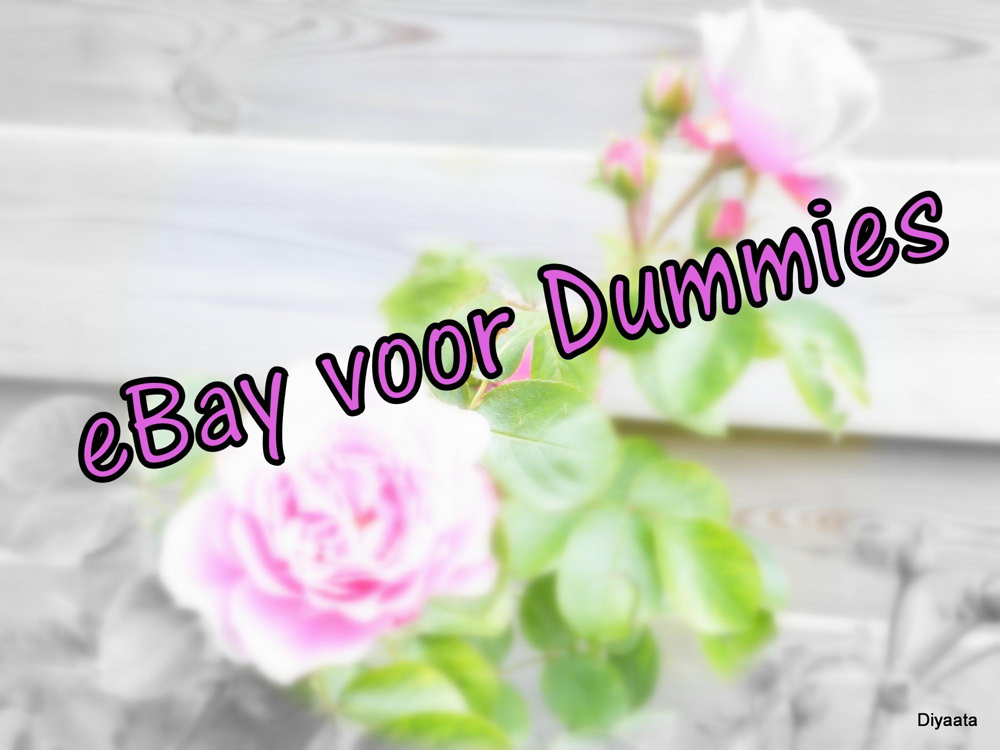 eBay voor Dummies