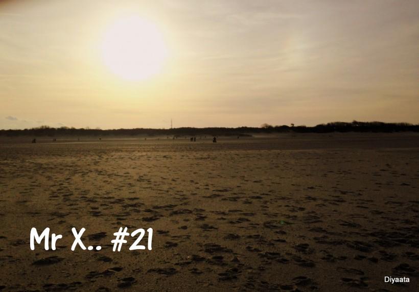 Mr X 21