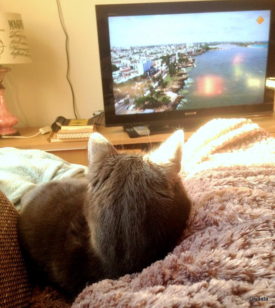Jack kijkt tv
