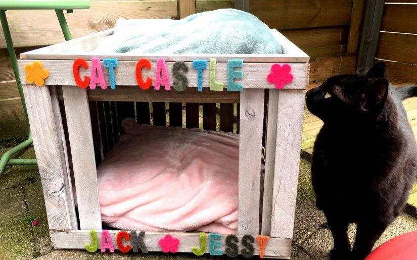 Action Cat Castle