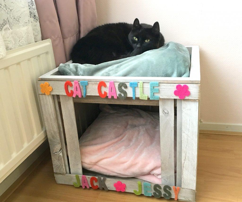 Cat Castle Action