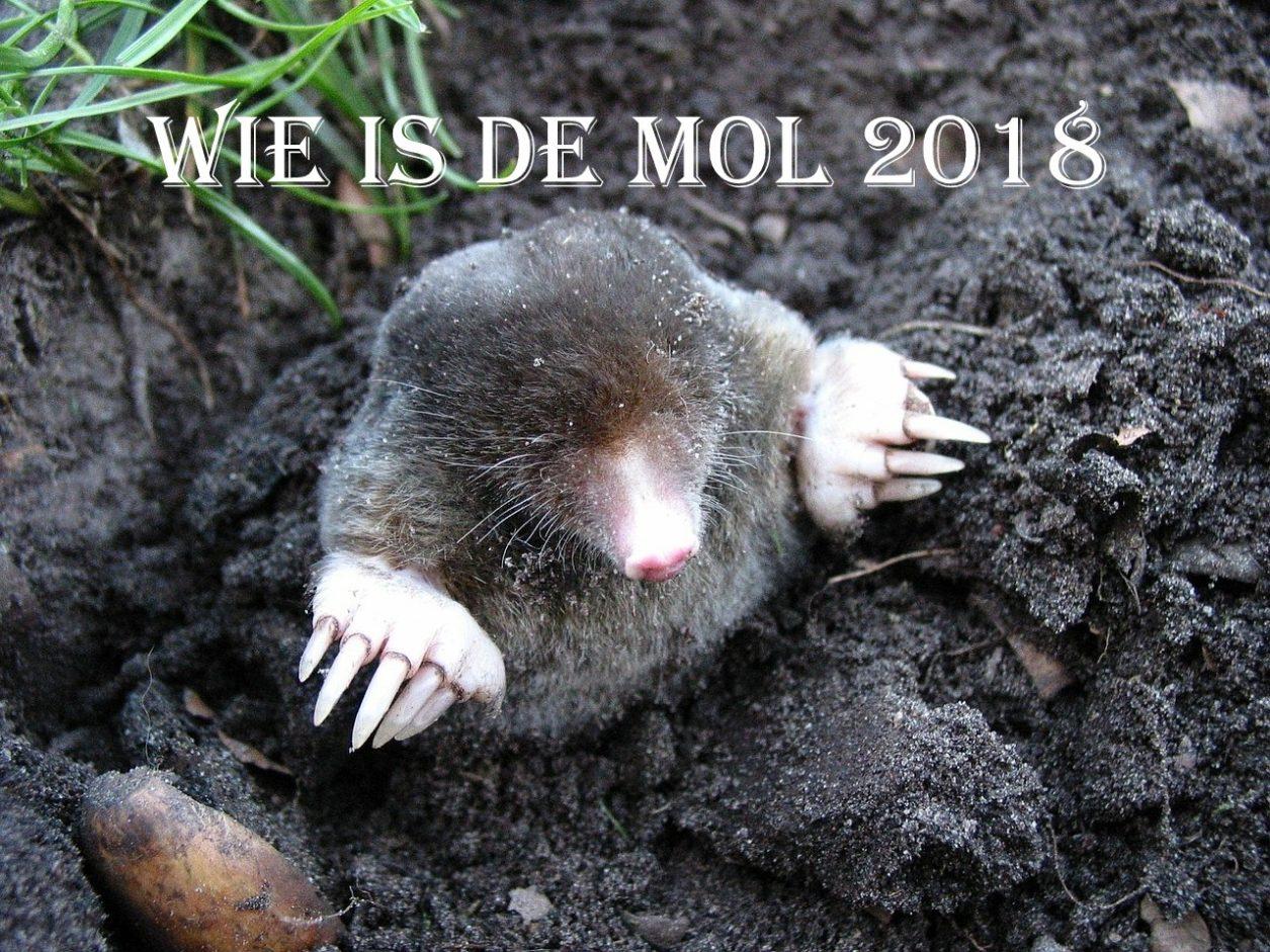 Wie is de Mol 2018