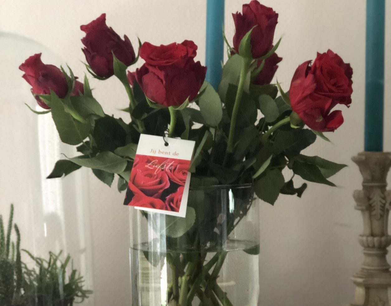 Liefde komt wanneer je het niet verwacht - Diyaata.com